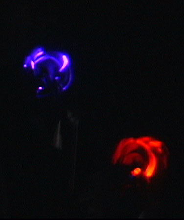 The LED pinwheels in the dark